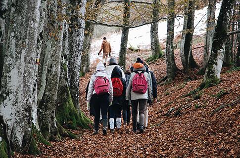 Wycieczka szkolna w lesie